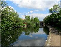 TQ3681 : Regent's Canal approaching a Railway Bridge by Chris Heaton