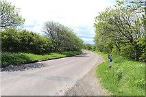 NU1535 : Road to Waren Mill by Billy McCrorie