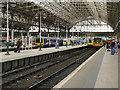 SJ8497 : Piccadilly Station, Manchester by David Dixon