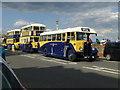 TV6199 : Vintage Buses at Eastbourne Carnival by PAUL FARMER
