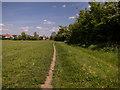 TL4363 : Histon and Impington Community Orchard by Kim Fyson