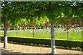 TF7828 : Italian Garden at Houghton by Mary Yardley