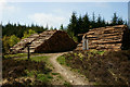 SD3495 : Log Piles in Grizedale Forest by Peter Trimming