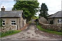 NT9911 : Road to Alnham House by Bill Boaden