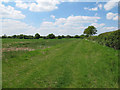 TL8625 : Field near Baldwin's Farm, Great Tey by Roger Jones