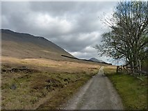 NN3039 : West Highland Way by James Allan