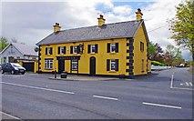 R7746 : E. O'Dwyer, Pallas Grean New, Co. Limerick by P L Chadwick