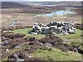 HU2754 : Supposed planticrub beside the road to West Burrafirth by Oliver Dixon
