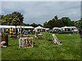 TL2308 : Hatfield Garden Show, Hatfield House, Hertfordshire by Christine Matthews