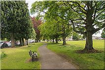 NO1326 : Scone Park by Rob Burke