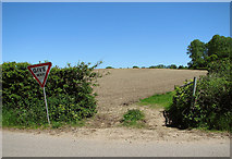 TM4592 : Field by Lily Lane, Aldeby by Evelyn Simak
