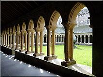 NM2824 : Iona Abbey by Ian Stewart