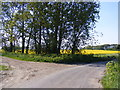 TM4781 : Church Lane & footpaths to A12 London Road & Clay Common by Geographer