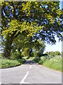 TM4580 : Church Road, Uggeshall by Adrian Cable