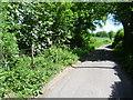 TQ6060 : Labour-in-Vain Road by Marathon