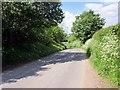 SJ3653 : Borras Hall Lane by Jeff Buck