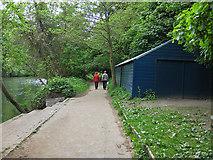 NZ2742 : Fearon Walk beside the River Wear by Pauline E