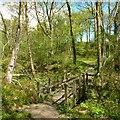 NS3182 : Footbridge in Garrawy Glen by Lairich Rig