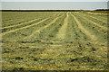 SK7671 : Hay meadow by Richard Croft
