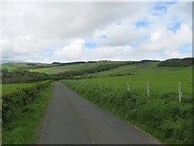 NU0012 : Lane, Prendwick by Richard Webb
