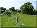 SU9175 : Footpath to Braywood by Alan Hunt