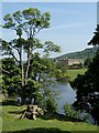 SK2569 : River Derwent, Chatsworth Park by Andrew Hill