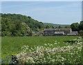 SK2571 : Field near Baslow by Andrew Hill