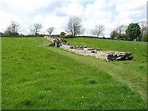 NY8871 : A stretch of Hadrian's Wall near Black Carts Farm by David Purchase
