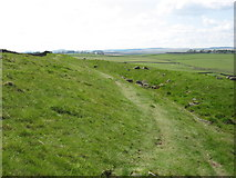 NY8771 : The Ditch near Milecastle 30 by David Purchase