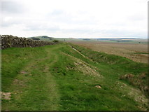 NY8370 : The Hadrian's Wall Path and the Ditch near Milecastle 33 by David Purchase