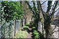 TQ5671 : Darent Valley Path by N Chadwick