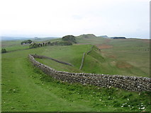 NY7969 : The Hadrian's Wall Path going west from Sewingshields by David Purchase