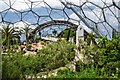 SX0554 : Eden Project: Inside the Mediterranean Biodome by Eugene Birchall