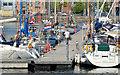 J3475 : Belfast Harbour Marina (2013-2) by Albert Bridge