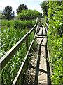 SE8675 : Footbridge over the lake, Scampston Hall by Pauline E