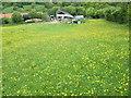 NZ8705 : Low Farm by T  Eyre