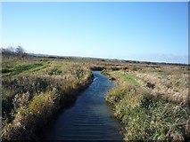 NU0545 : Drain near Goswick by DS Pugh