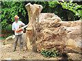 SP9613 : Building the Wild Wood Den at Ashridge by Chris Reynolds