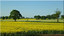 SO7729 : Arable land near Staunton by Jonathan Billinger