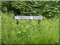 TM4481 : Common Road sign by Adrian Cable