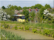 SD7908 : Tram and Canal near Withins Bridge by David Dixon