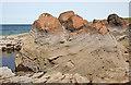 NJ1570 : Cross-bedded Sandstone by Anne Burgess