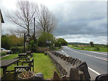 ST0104 : The beer garden at the Merry Harriers Inn, Westcott by Ian S