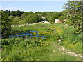 SJ6905 : Madeley Footpath by Gordon Griffiths