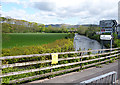 SD0799 : Rivert Irt at Holmrook by Anne Burgess
