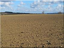 NZ0666 : Farmland north of Nafferton Farm (2) by Mike Quinn