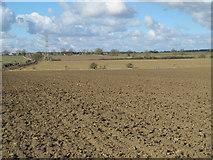 NZ0666 : Farmland east of Cobbler's Lane by Mike Quinn