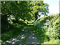 SJ8160 : Up the bridleway to Spen Green by Richard Law