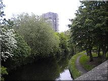 SJ9400 : Wyrley & Essington Canal in Wednesfield (1) by Richard Vince