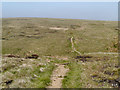 SD9912 : Marsden Moor, The Pennine Way by David Dixon